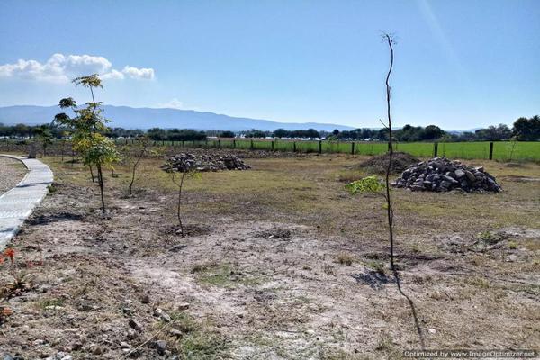 Foto de terreno habitacional en venta en niños heroes , casa de san miguel, san miguel de allende, guanajuato, 10213191 No. 14