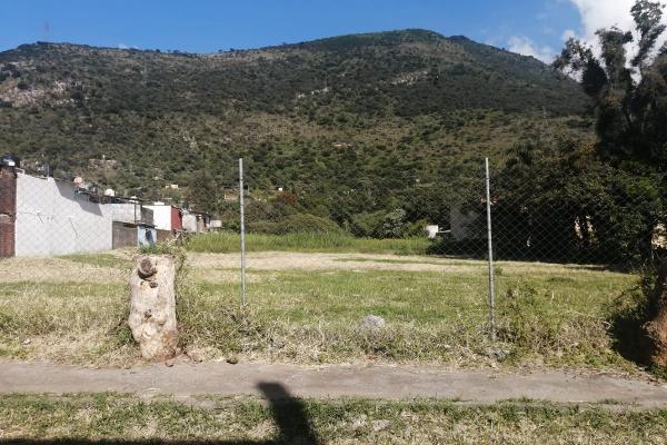 Foto de terreno habitacional en venta en  , nogales centro, nogales, veracruz de ignacio de la llave, 0 No. 04