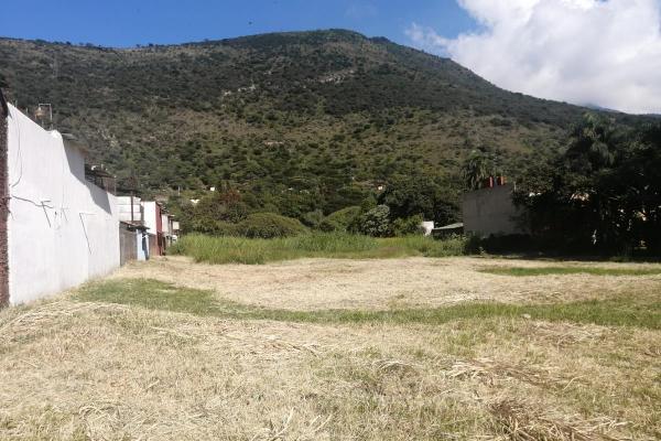 Foto de terreno habitacional en venta en  , nogales centro, nogales, veracruz de ignacio de la llave, 0 No. 08