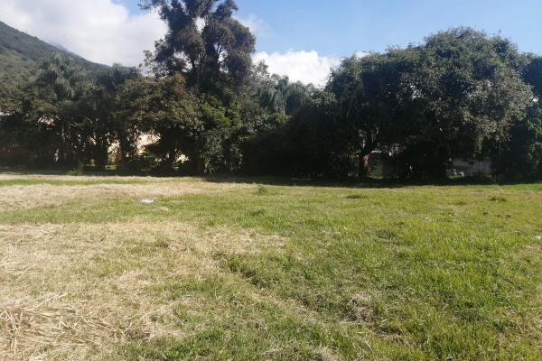Foto de terreno habitacional en venta en  , nogales centro, nogales, veracruz de ignacio de la llave, 0 No. 10