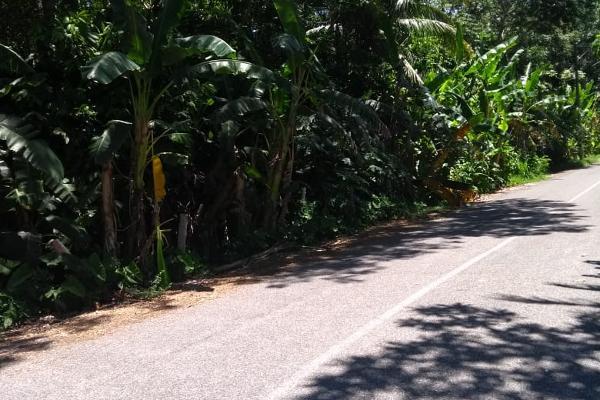 Foto de terreno comercial en renta en norte 2a seccion , norte 2a secc, comalcalco, tabasco, 5683034 No. 01
