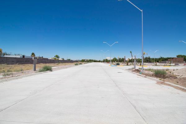Foto de terreno habitacional en venta en novena sur 2027 , sector sur, delicias, chihuahua, 7271902 No. 04