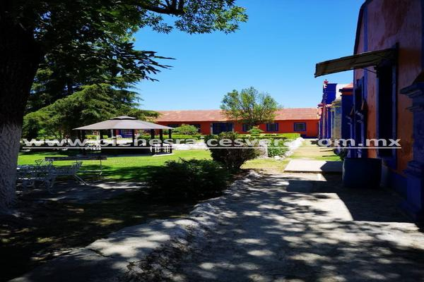 Foto de rancho en venta en  , nueva ex-hacienda de apulco, metepec, hidalgo, 14159371 No. 22