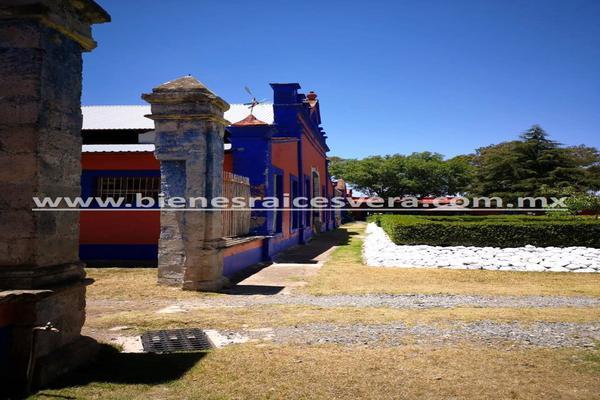 Foto de rancho en venta en  , nueva ex-hacienda de apulco, metepec, hidalgo, 14159371 No. 29