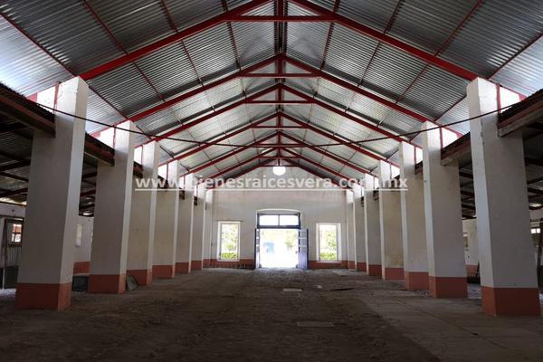 Foto de rancho en venta en  , nueva ex-hacienda de apulco, metepec, hidalgo, 14159371 No. 30