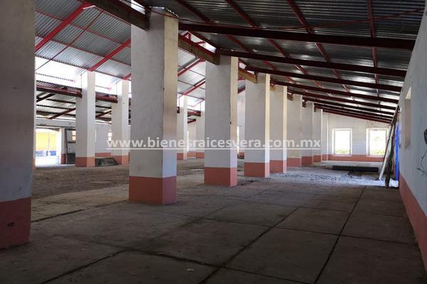 Foto de rancho en venta en  , nueva ex-hacienda de apulco, metepec, hidalgo, 14159371 No. 32