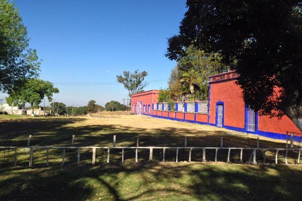 Foto de rancho en venta en  , nueva ex-hacienda de apulco, metepec, hidalgo, 0 No. 02