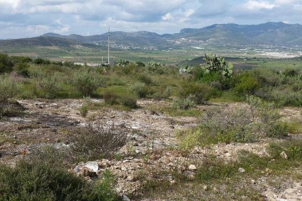 Foto de terreno habitacional en venta en  , san juan tilcuautla, san agustín tlaxiaca, hidalgo, 7304437 No. 04