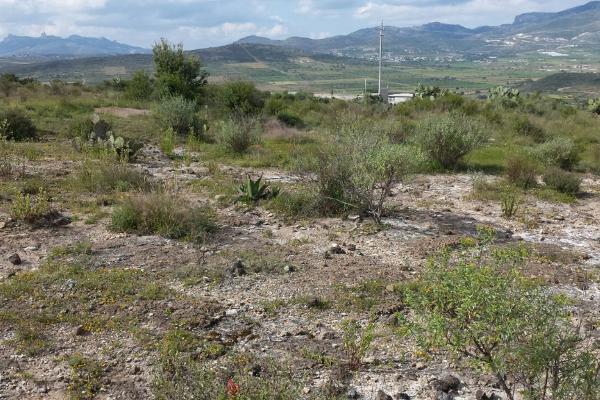 Foto de terreno habitacional en venta en  , san juan tilcuautla, san agustín tlaxiaca, hidalgo, 7304437 No. 39