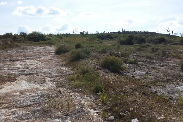 Foto de terreno habitacional en venta en  , san juan tilcuautla, san agustín tlaxiaca, hidalgo, 7304437 No. 40