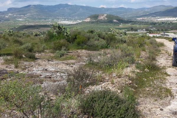 Foto de terreno habitacional en venta en  , san juan tilcuautla, san agustín tlaxiaca, hidalgo, 7304437 No. 48