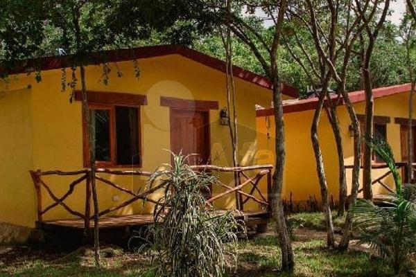Foto de edificio en venta en nuevo durango, quintana roo, mexico , nuevo xcan, lázaro cárdenas, quintana roo, 5712133 No. 03