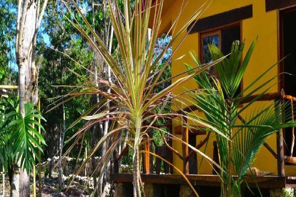 Foto de edificio en venta en nuevo durango, quintana roo, mexico , san francisco, lázaro cárdenas, quintana roo, 5712133 No. 17