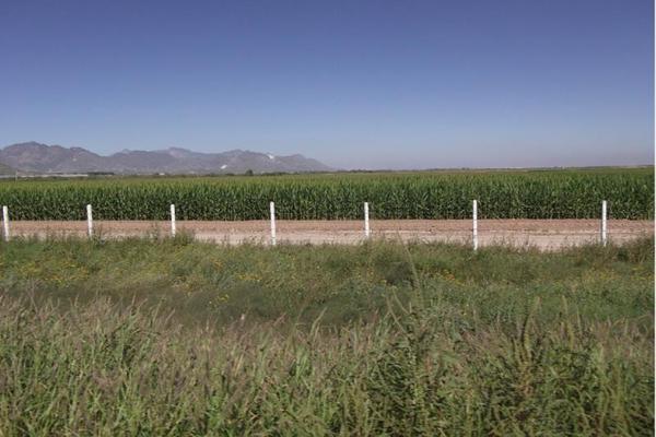 Foto de terreno comercial en venta en  , nuevo gómez, gómez palacio, durango, 5921460 No. 06