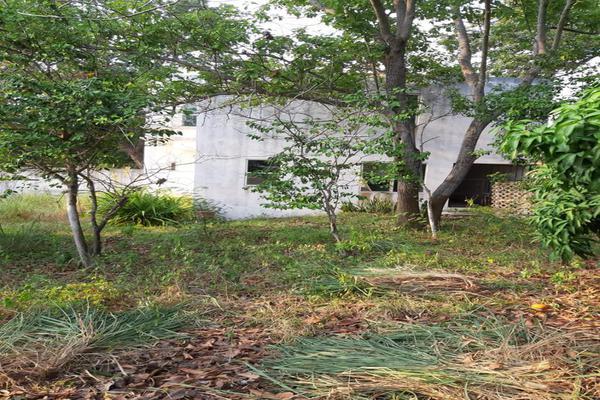 Foto de terreno industrial en venta en nuevo león 283, lindavista, pueblo viejo, veracruz de ignacio de la llave, 0 No. 04