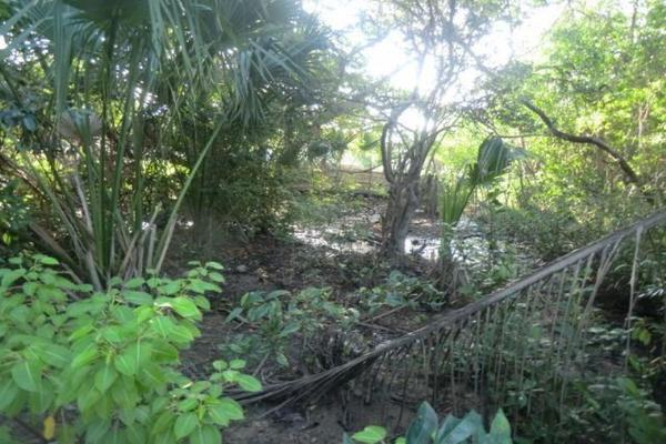 Foto de terreno comercial en venta en o oo, chacahua, villa de tututepec de melchor ocampo, oaxaca, 10083947 No. 04