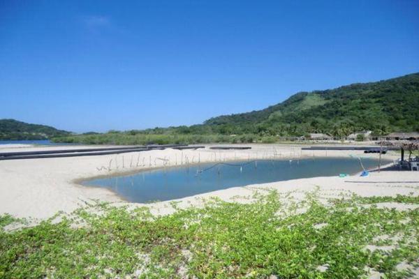 Foto de terreno comercial en venta en o oo, chacahua, villa de tututepec de melchor ocampo, oaxaca, 10084070 No. 07