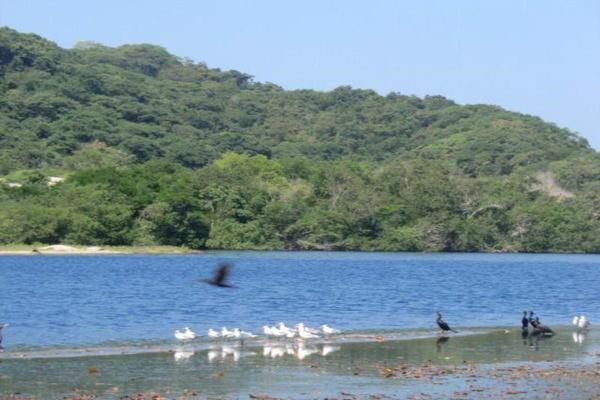 Foto de terreno comercial en venta en o oo, chacahua, villa de tututepec de melchor ocampo, oaxaca, 10084070 No. 14