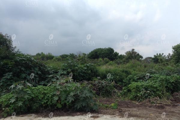 Foto de terreno habitacional en venta en  , ocotepec, cuernavaca, morelos, 5689466 No. 02