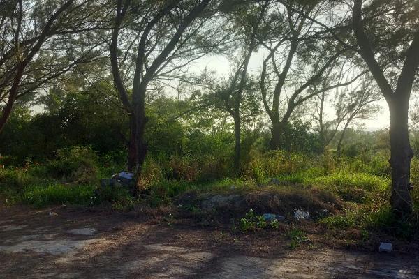 Foto de terreno habitacional en venta en octava (fundadores) , miramar, ciudad madero, tamaulipas, 3462858 No. 01