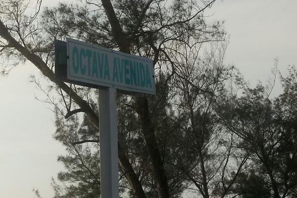 Foto de terreno habitacional en venta en octava (fundadores) , miramar, ciudad madero, tamaulipas, 3462858 No. 06