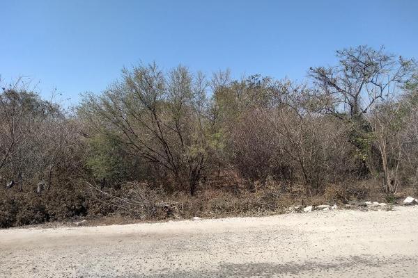 Foto de terreno comercial en venta en ojo de agua 100, ciudad ixtepec centro, ciudad ixtepec, oaxaca, 8862094 No. 01