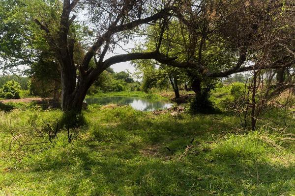 Foto de terreno habitacional en venta en ojo de agua , agua blanca, tonalá, jalisco, 5338227 No. 01