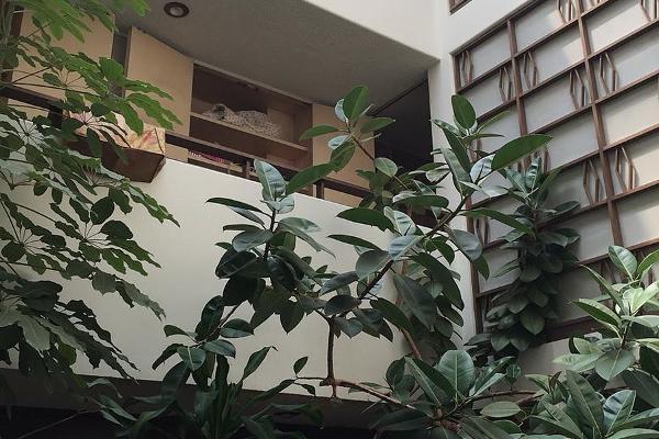 Foto de casa en venta en olivo , florida, álvaro obregón, df / cdmx, 5828206 No. 02