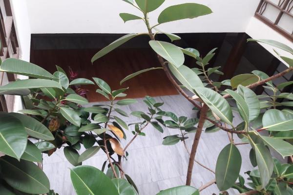 Foto de casa en venta en olivo , florida, álvaro obregón, df / cdmx, 5828206 No. 07