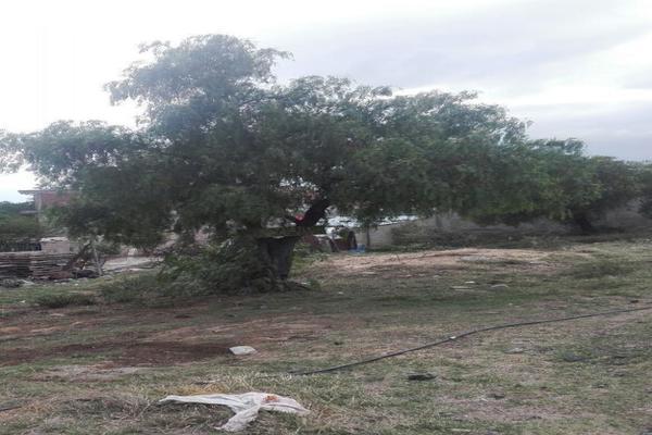 Foto de terreno habitacional en venta en  , olmos, tizayuca, hidalgo, 7300904 No. 03