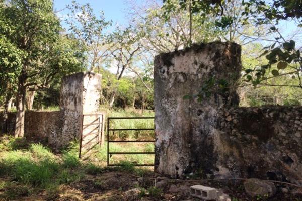 Foto de rancho en venta en  , oxkutzcab, oxkutzcab, yucatán, 2628405 No. 08