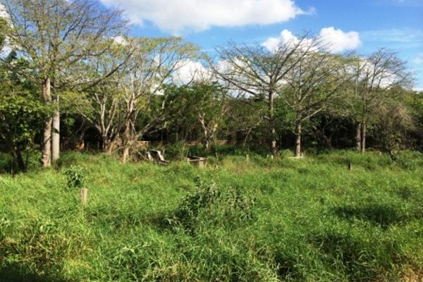 Foto de rancho en venta en  , oxkutzcab, oxkutzcab, yucatán, 2628405 No. 10