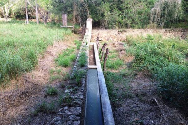 Foto de rancho en venta en  , oxkutzcab, oxkutzcab, yucatán, 2628405 No. 11