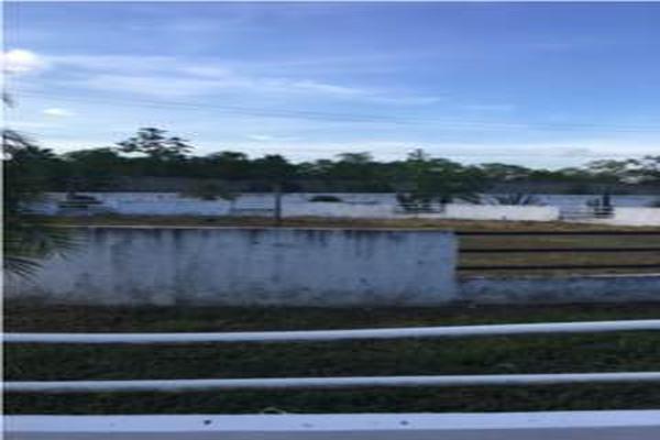 Foto de rancho en venta en pajonal , 16 de septiembre (el panal), macuspana, tabasco, 5339716 No. 09