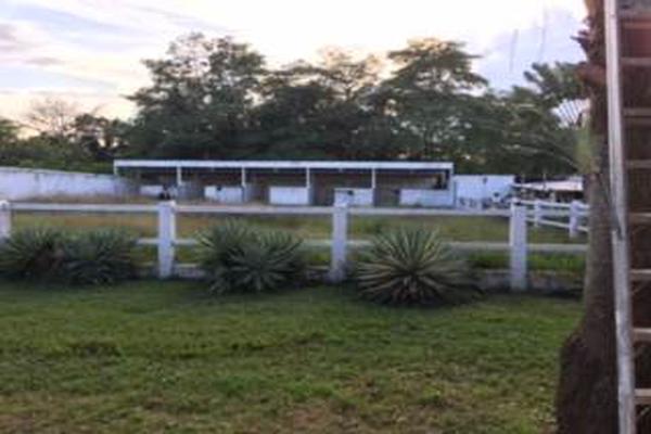 Foto de rancho en venta en pajonal , 16 de septiembre (el panal), macuspana, tabasco, 5339716 No. 16