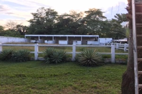 Foto de rancho en venta en pajonal , 16 de septiembre (el panal), macuspana, tabasco, 5339716 No. 17