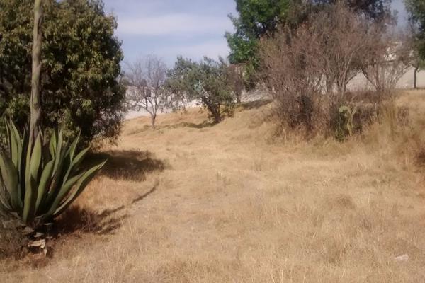 Foto de terreno habitacional en venta en palma y niños martires 0 , santa maría atlihuetzian, yauhquemehcan, tlaxcala, 14816474 No. 06