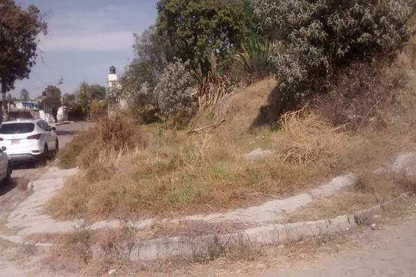 Foto de terreno habitacional en venta en palma y niños martires 0 , santa maría atlihuetzian, yauhquemehcan, tlaxcala, 14816474 No. 08