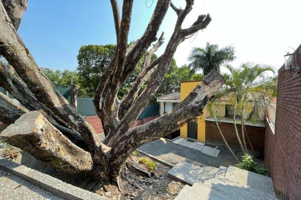 Foto de casa en venta en  , palmira tinguindin, cuernavaca, morelos, 20430964 No. 26
