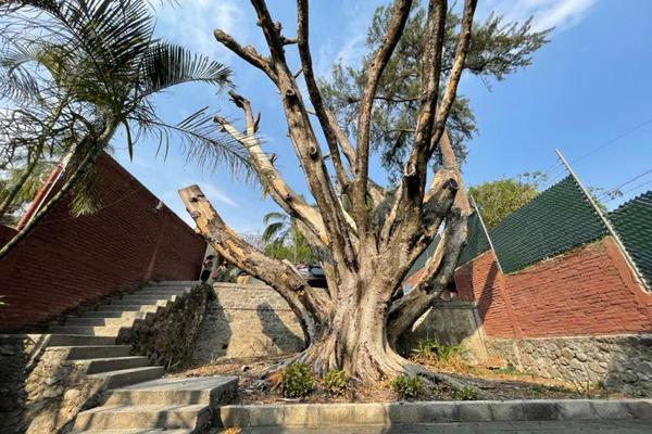 Foto de casa en venta en  , palmira tinguindin, cuernavaca, morelos, 20430964 No. 27