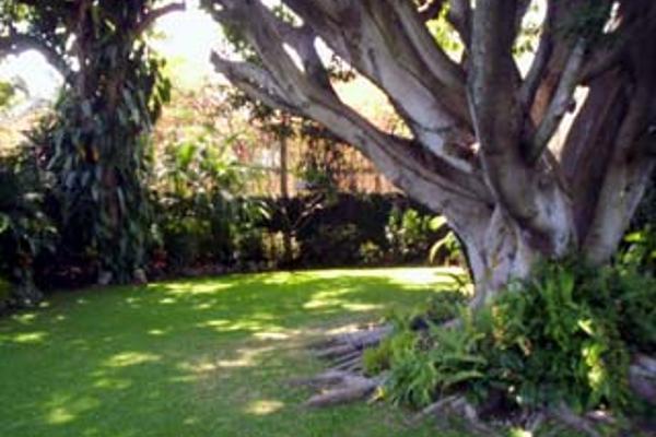 Foto de casa en renta en  , palmira tinguindin, cuernavaca, morelos, 2634694 No. 02