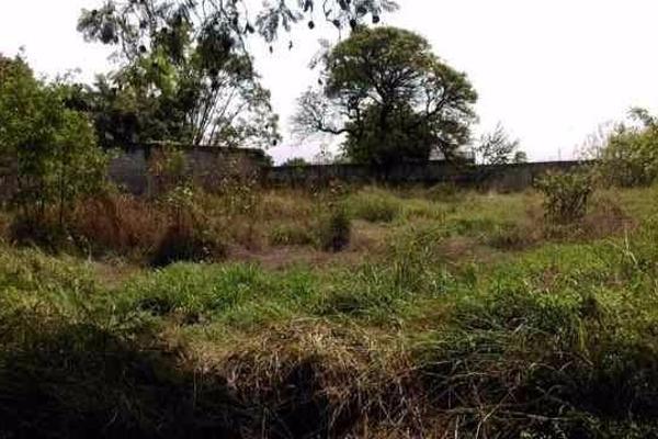 Foto de terreno habitacional en venta en  , palmira tinguindin, cuernavaca, morelos, 2642948 No. 03