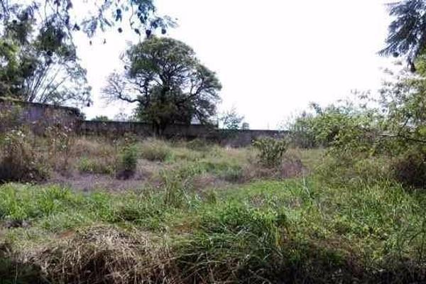 Foto de terreno habitacional en venta en  , palmira tinguindin, cuernavaca, morelos, 2642948 No. 04