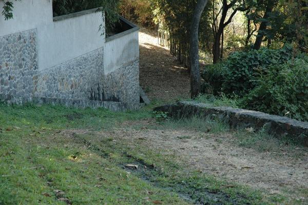 Foto de terreno habitacional en venta en avenida palmira , palmira tinguindin, cuernavaca, morelos, 5323466 No. 03
