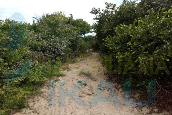 Foto de terreno habitacional en venta en  , palo blanco, tamiahua, veracruz de ignacio de la llave, 10076448 No. 02