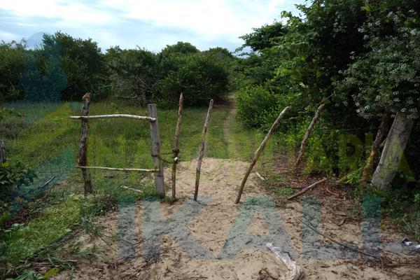 Foto de terreno habitacional en venta en  , palo blanco, tamiahua, veracruz de ignacio de la llave, 10076448 No. 03