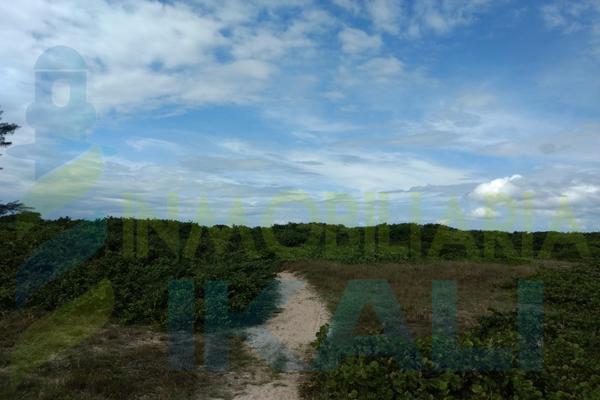 Foto de terreno habitacional en venta en  , palo blanco, tamiahua, veracruz de ignacio de la llave, 10076448 No. 04