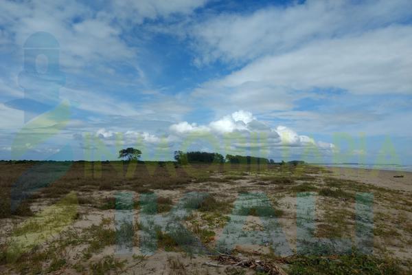 Foto de terreno habitacional en venta en  , palo blanco, tamiahua, veracruz de ignacio de la llave, 10076448 No. 05