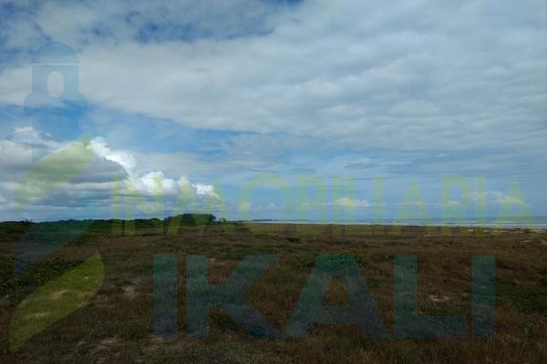 Foto de terreno habitacional en venta en  , palo blanco, tamiahua, veracruz de ignacio de la llave, 10076448 No. 09