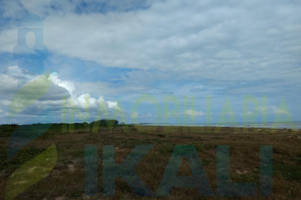 Foto de terreno habitacional en venta en  , palo blanco, tamiahua, veracruz de ignacio de la llave, 10076463 No. 03